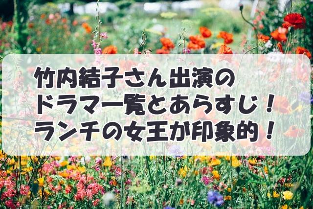 竹内結子さん出演のドラマ一覧とあらすじ!ランチの女王が印象的!