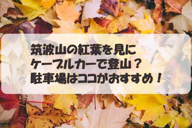 筑波山の紅葉を見にケーブルカーで登山?駐車場はココがおすすめ!